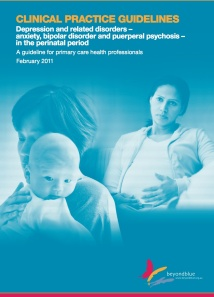 Austin M-P, Highet N and the Guidelines Expert Advisory Committee (2011) Clinical practice guidelines for depression and related disorders – anxiety, bipolar disorder and puerperal psychosis – in the perinatal period. A guideline for primary care health professionals. Melbourne: beyondblue: the national depression initiative.