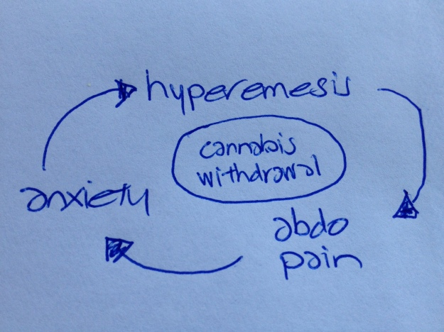 A hospital file diagram such as this can assist in conveying an understanding of the patient's experience.