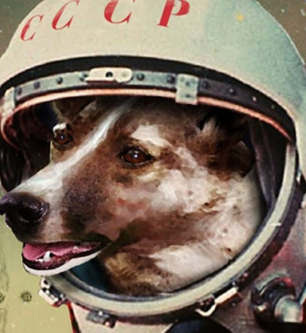 Laika - First dog in Space by Belgian artist Paul Gosselin. Source: http://cultured.com/image/4063/Laika_First_dog_in_Space/#fav